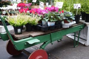 Borough Market flowers