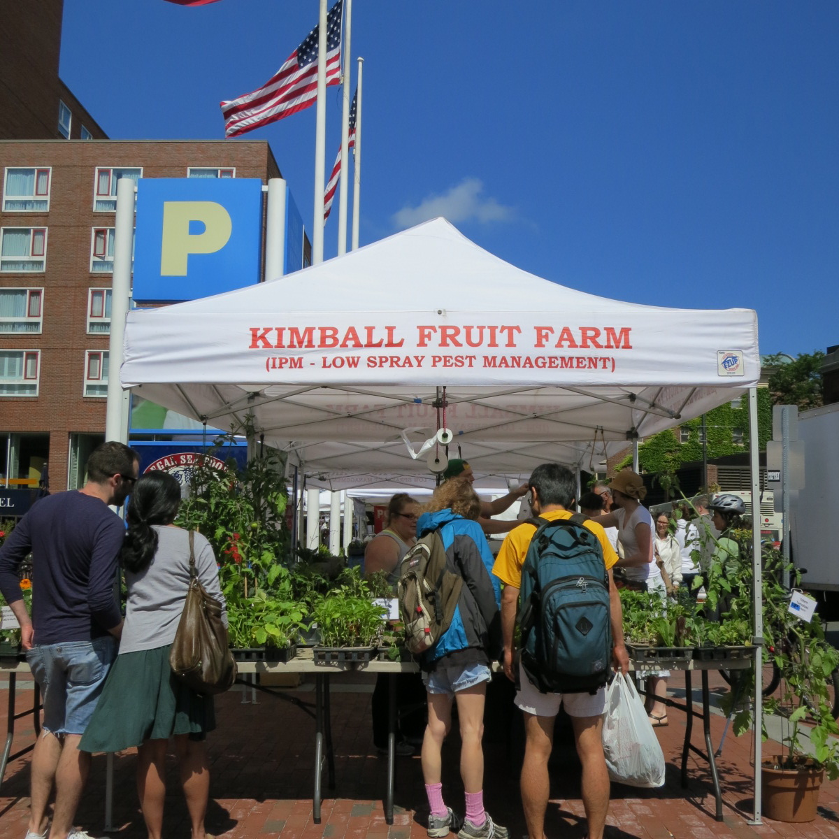 blog news events government funding farmers market