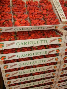 Crates of Gariguette strawberries piled high at Rungis