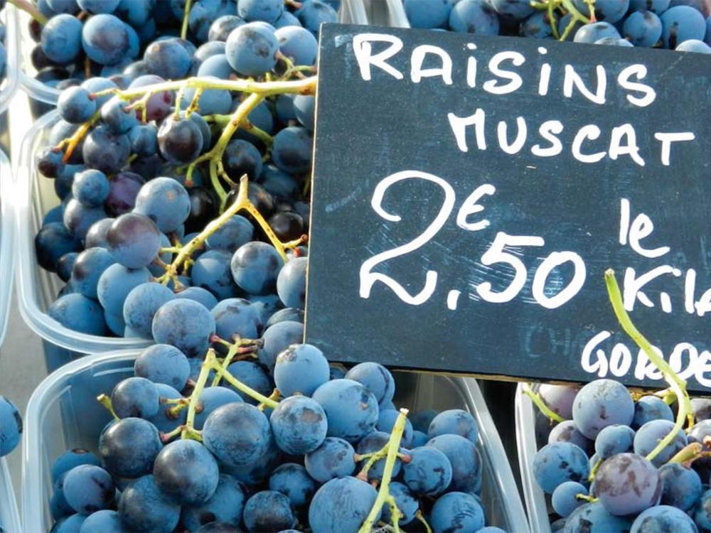 grapes-1000x750