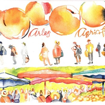 Arles market and apricots by artist Carol Gillott