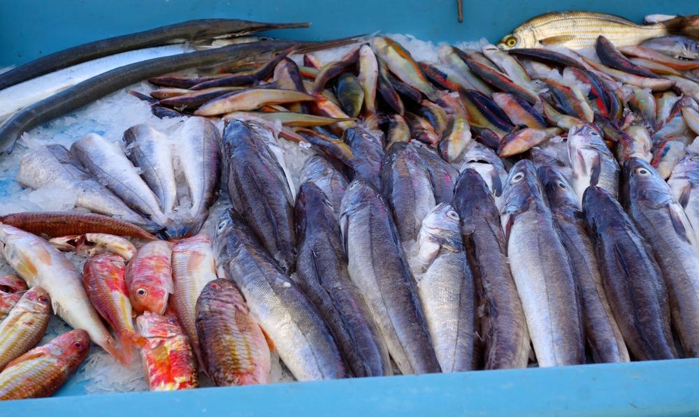 Marseille fish market